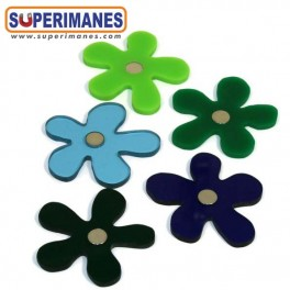 IMANES FLORES WINTER SET 5uds.